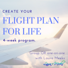 flight plan for life coaching